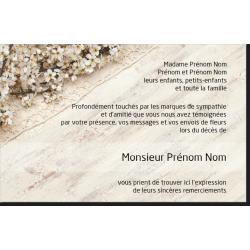 Carte de Remerciements - PP3